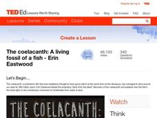 The Coelacanth: A Living Fossil of a Fish Video