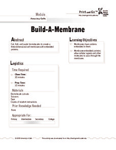 Build-A-Membrane Activities & Project