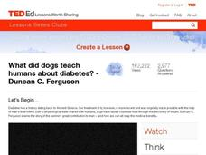 What Did Dogs Teach Humans About Diabetes? diseases Video