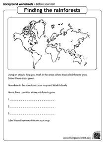 Finding the Rainforests Worksheet