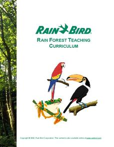 Rain Forest Teaching Curriculum Unit