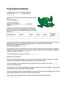 Frog External Anatomy Handouts & Reference for 9th - 12th Grade ...