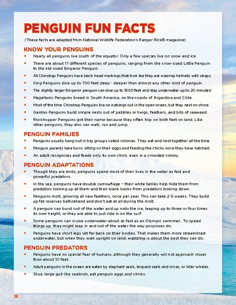 Penguin Fun Facts Handouts & Reference