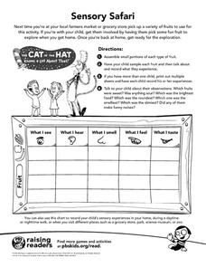 Sensory Safari Graphic Organizer