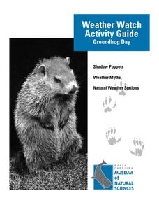 Weather Watch Activity Guide: Groundhog Day Unit