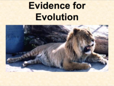 Evidence of Evolution Presentation