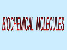 Biochemical Molecules Presentation