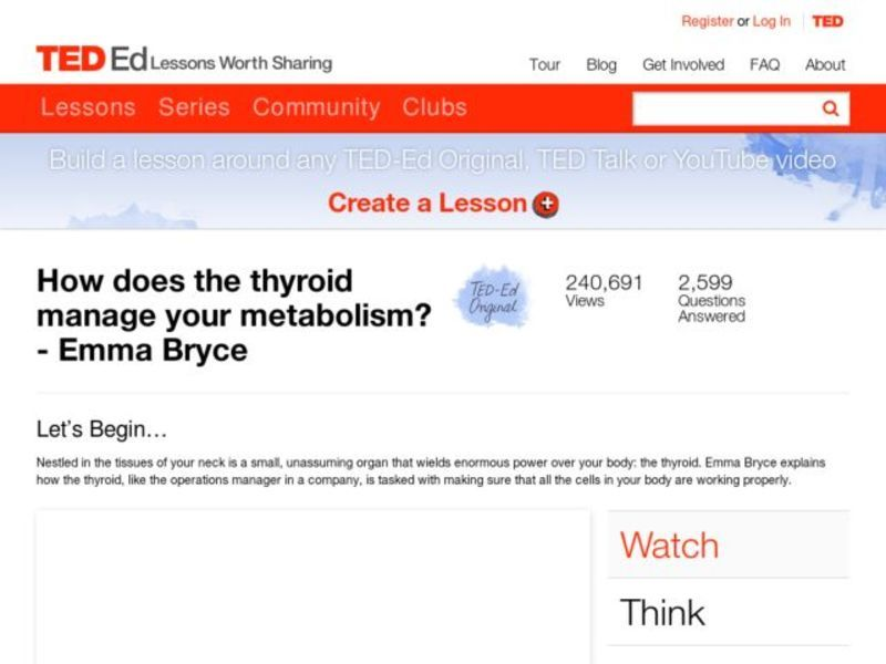 How Does the Thyroid Manage Your Metabolism? Video