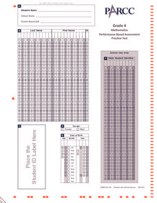 Performance Based Assessment Practice Test (Grade 4 Math