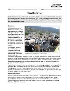 Herd Behavior Worksheet for 9th - 10th Grade | Lesson Planet