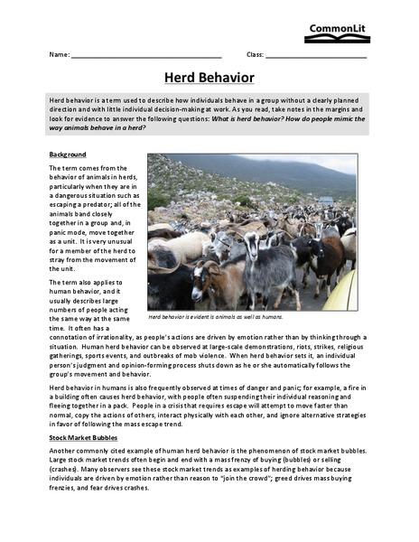 Herd Behavior Worksheet for 9th - 10th Grade   Lesson Planet