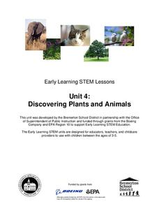 Discovering Plants and Animals Lesson Plan
