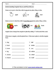 Understanding Singular Nouns and Plural Nouns Worksheet