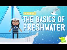 The Basics of Freshwater Video