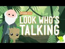 Look Who's Talking Video