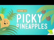 How to Get Resources - Picky Pineapples Video