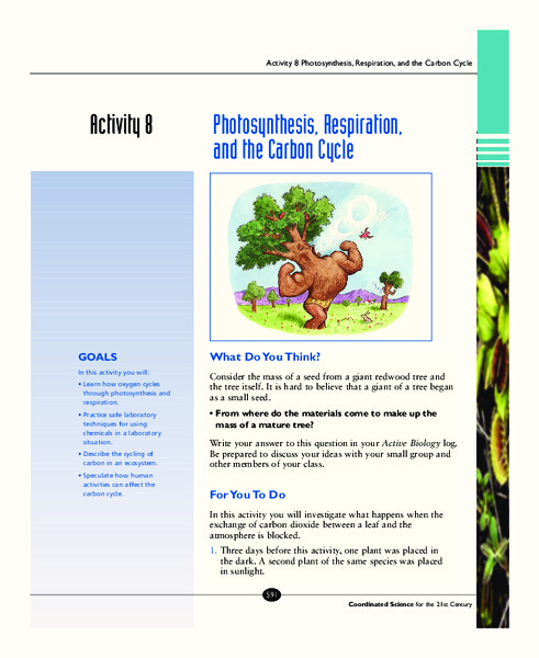 Photosynthesis, Respiration, and the Carbon Cycle Activities & Project