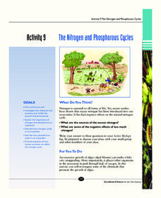 The Nitrogen and Phosphorous Cycles Activities & Project