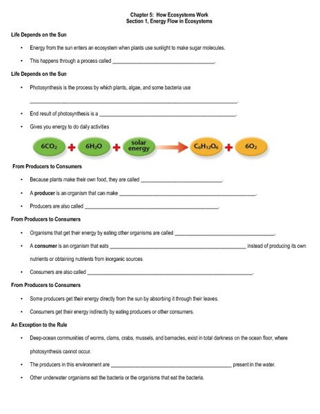 How Ecosystems Work Worksheet For 6th 9th Grade Lesson