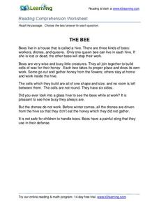 The Bee Worksheet