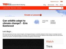 Can Wildlife Adapt to Climate Change? Video