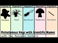 Dichotomous Keys: Identification Achievement Unlocked Video