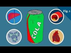 What Does Sugar Actually Do To Your Body? Video