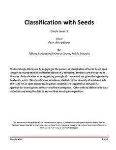 Classification with Seeds Lesson Plan