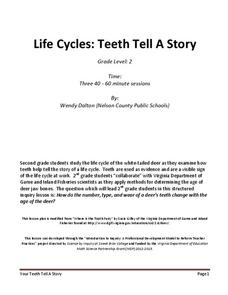 Life Cycles: Teeth Tell A Story Assessment