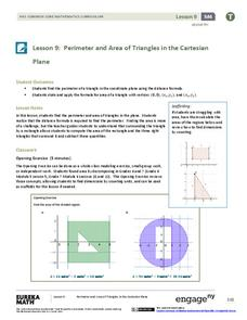 Perimeter and Area of Triangles in the Cartesian Plane Lesson Plan