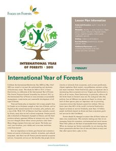 Focus on Forests Lesson Plan