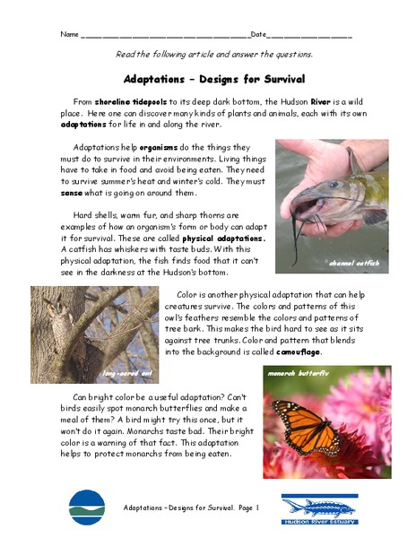 Adaptations – Designs for Survival Handouts & Reference