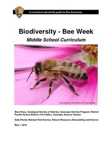 Biodiversity—Bee Week Unit