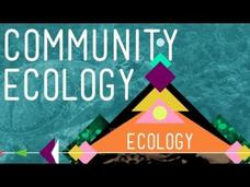 Community Ecology: Feel the Love Video