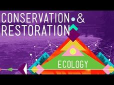 Conservation and Restoration Ecology Video