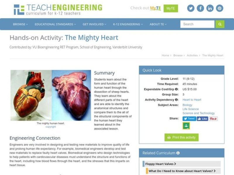 The Mighty Heart Activities & Project