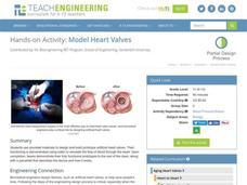 Artificial Heart Valves Lesson Plans & Worksheets
