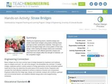 Straw Bridges Activities & Project