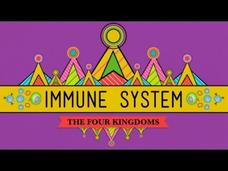 Your Immune System: Natural Born Killer Video