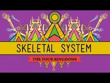 The Skeletal System: It's ALIVE! Video
