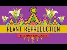 The Plants and the Bees: Plant Reproduction Video
