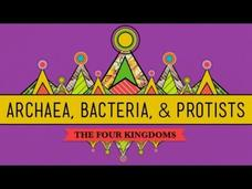 Old and Odd: Archaea, Bacteria, and Protists Video