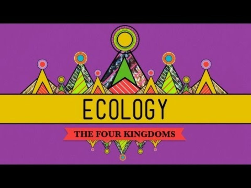 Ecology - Rules for Living on Earth Video
