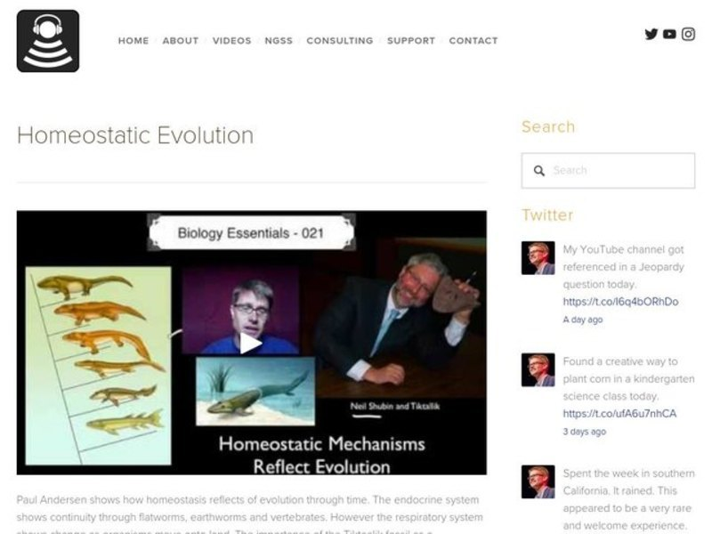 Homeostatic Evolution Video
