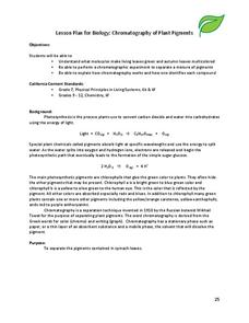 Chromatography of Plant Pigments Lesson Plan