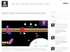 Signal Transmission and Gene Expression Video