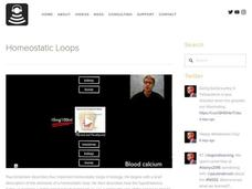 Homeostatic Loops Video