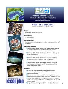 Biological Oceanographic Investigations – What's in That Cake? Lesson Plan