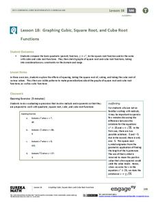 Graphing Cubic, Square Root, and Cube Root Functions Lesson Plan