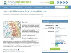 Cell Membrane Structure and Function Lesson Plan